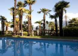 Swimming Pool des Hotel Stella